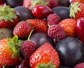 Various Fresh Summer Berries And Fruits. Ripe Strawberries, Raspberries, Red Berries And Plum. Top V poster