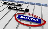 Milestones Project Key Achievements Timeline Gantt Chart 3d Illustration poster