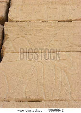Hieroglyphs in Egypt temple Wall
