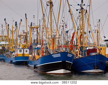 Dutch Fishing Fleet Lauwersoog