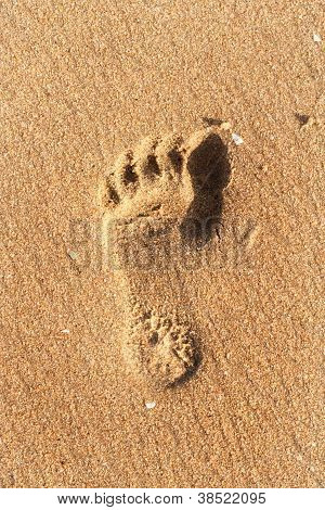 Closeup Of Foot Print On Beach