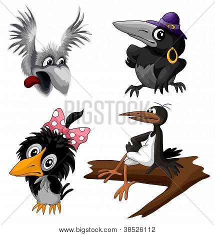 Cartoon birds crow and magpie set
