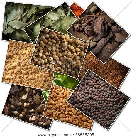 Collection of pictures of different spices