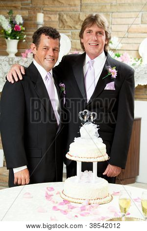 Gay marriage concept.  Two handsome grooms at their wedding reception.