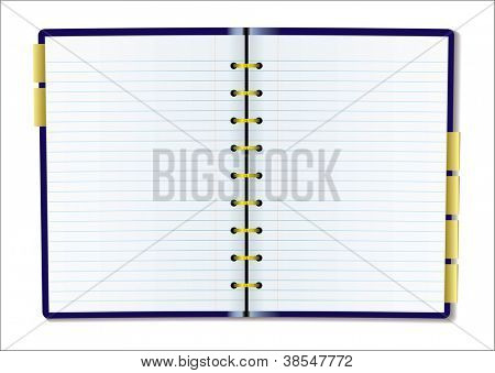 Two pages of diary blank with rulled lines