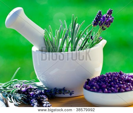 Fresh lavender herbs in the mortar - alternative medicine, healthy cosmetics concept