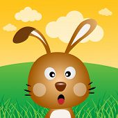 stock photo of rabbit hole  - A brown rabbit in the forest with sky - JPG