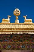 picture of dharma  - Tibetan Monastery Gates - JPG