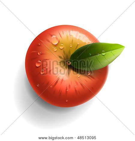 Red ripe apple isolated