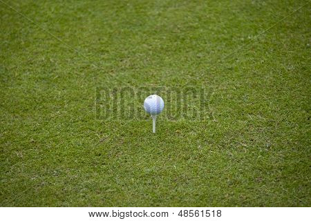 SAINT-OMER, FRANCE. 16-06-2010, A ball on a tee during the preview day of the European Tour, 14th Open de Saint-Omer, part of the Race to Dubai tournament and played at the AA Saint-Omer Golf Club .