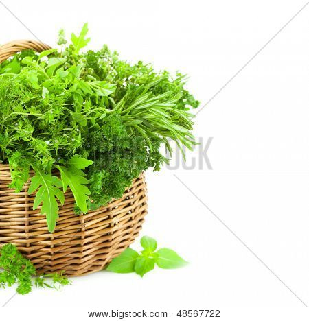Collection of Fresh Spicy Herbs in Basket / isolated on white / thyme, basil, oregano, parsley, marjoram, rucola, sage and rosemary herbs / Vertical composition