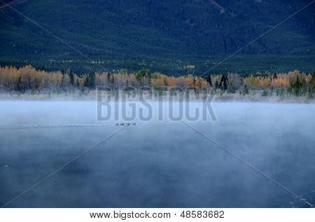 Vermillion Lakes In A Morning Mist,canadian Rockies,canada