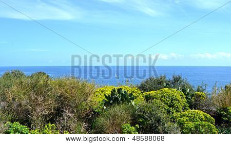 Felsige Küste von Sizilien - Catania