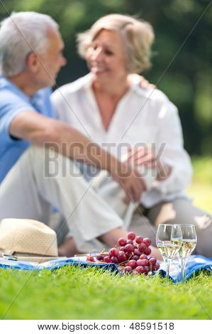 Smiling elderly couple picnicking on grass