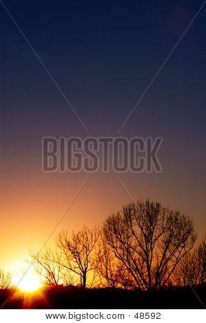 Sunset -1