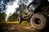 stock photo of dirt-bike  - Quad rider jumping on a muddy forest trail - JPG