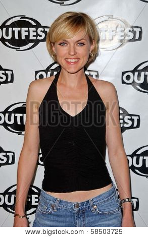 HOLLYWOOD - JULY 10: Elaine Hendrix at the Premiere of