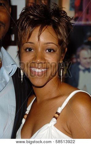 HOLLYWOOD - AUGUST 15: Chrystee Pharris at the Los Angeles Premiere of