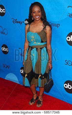 PASADENA, CA - JULY 19: Dana Davis at the Disney ABC Television Group All Star Party on July 19, 2006 at Kidspace Children's Museum in Pasadena, CA.