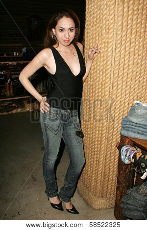 WEST HOLLYWOOD - AUGUST 24: Jennifer Leeser at the Antik Denim Pre-Emmy Gift Experience on August 4, 2006 at Antik Denim in West Hollywood, CA.