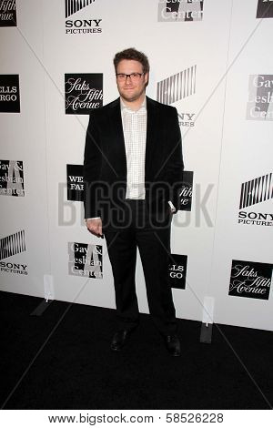 Seth Rogen at the L.A. Gay And Lesbian Center Hosts 'An Evening' honoring Amy Pascal and Ralph Ricci, Beverly Wilshire, Beverly Hills, CA 03-21-13
