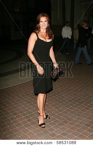 HOLLYWOOD - AUGUST 25: Brooke Shields at the