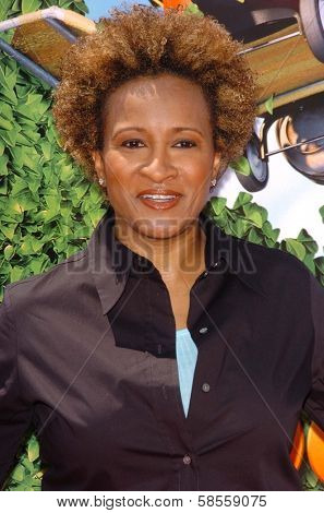 WESTWOOD - APRIL 30: Wanda Sykes at the Los Angeles Premiere of