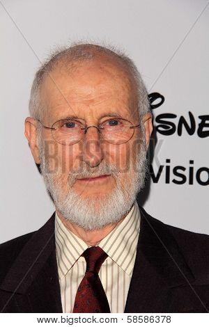 James Cromwell at the Disney Media Networks International Upfronts, Walt Disney Studios, Burbank, CA 05-19-13
