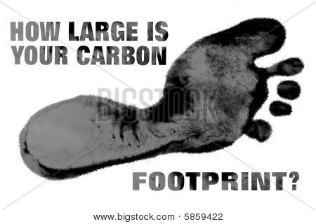 How Large Carbon Footprint Message