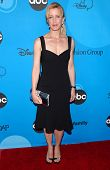 PASADENA, CA - JULY 19: Felicity Huffman at the Disney ABC Television Group All Star Party on July 1