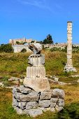 picture of artemis  - Temple of artemis in ephesus, kusadasi, turkey