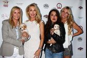 Katherine Kelly Lang, Linda Thompson and Devin DeVasquez at the Player Concert celebrating Devin DeV