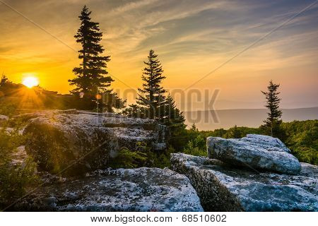Sunrise At Bear Rocks Preserve, In Dolly  Sods Wilderness, Monongahela National Forest, West Virgini