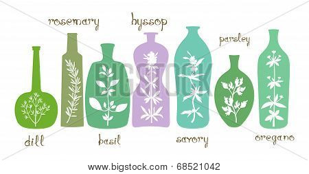 Aromatic Herbs Essentials