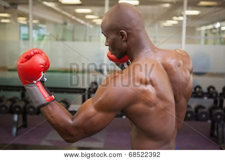 Side view of a shirtless muscular boxer in defensive stance in health club