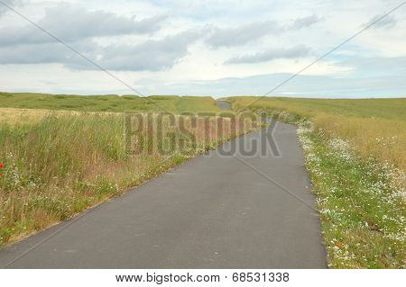 Road On Countryside