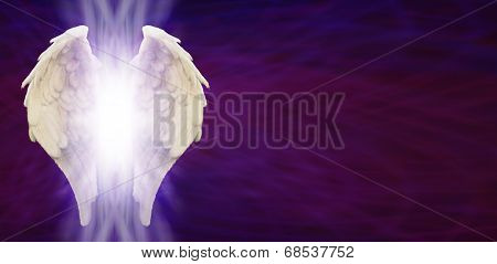White Angel Wings on Purple Matrix background