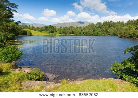 Tarn Hows Lake District National Park Cumbria England uk