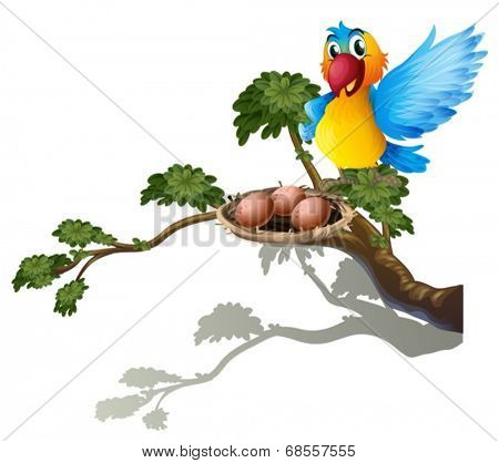 Illustration of a bird watching the nest on a white background