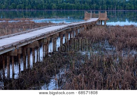 Marsh And Boardwalk Along Minnesota River