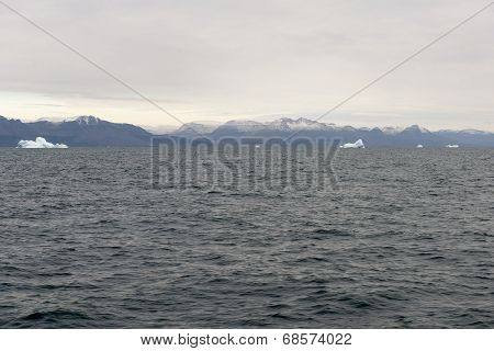 Icebergs Around Disko Island