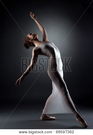 Sexy graceful ballerina posing in studio