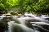 pic of smoky mountain  - Cascades in the Oconaluftee River at Great Smoky Mountains National Park North Carolina - JPG