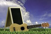 pic of ukulele  - Ukulele with blue sky and Blank Blackboard on green grass - JPG