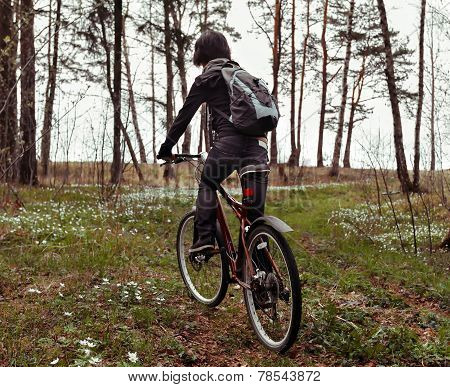 Woman riding on bicycle in forest