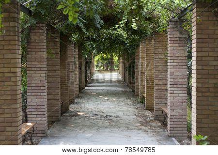 Pergola In Athens Park, Greece