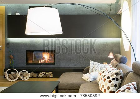 Designed Lamp In Living Room
