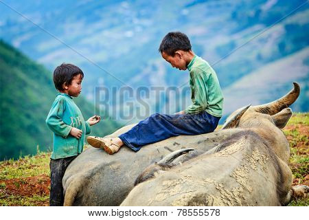 SAPA, VIETNAM - JUNE 10, 2011: Unidentified vietnamese children in mountains near Ta Van village. Though Vietnam's economic growth rate is among the highest in the world, poverty rate is still high