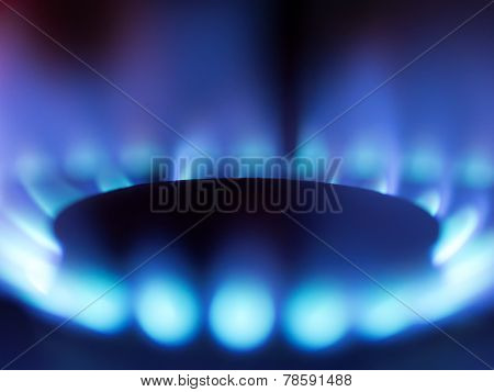 Gas Stove Blue Flame
