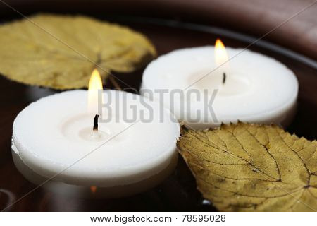 Two white candles floating with leaves on water in bowl